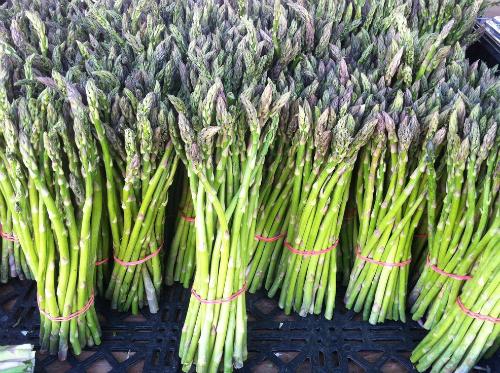asparagus_500x300
